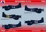 AV  7024 Skyraiders in FAA