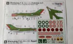 93106 Shenyang F-6 /MIG-19S/Pakistan A.F.  Egyptian A.F.